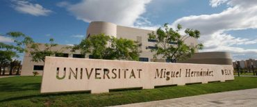 Universidad Miguel Hernández 8