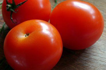 Variedades tradicionales del tomate resistentes a tres virus gracias a UMH 1