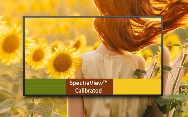 NEC mejora las pantallas de las Series P y V con opciones de personalización, NEC mejora las pantallas de las Series P y V con opciones de personalización, Revista NUVE