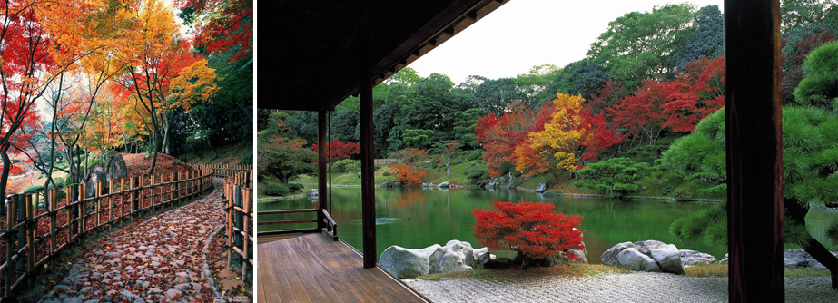 Shikoku, la isla más espiritual de Japón, Shikoku, la isla más espiritual de Japón, Revista NUVE