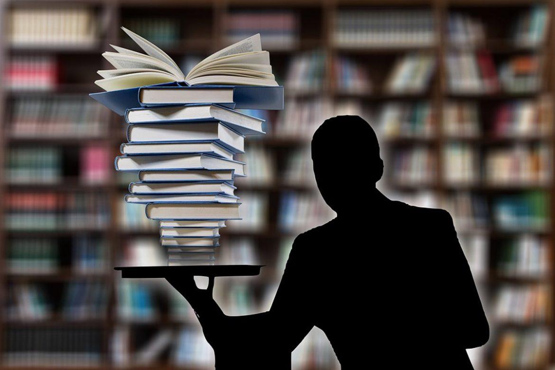 El Ministerio de Educación, Cultura y Deporte convoca 100 plazas de Estancias Profesionales, El Ministerio de Educación, Cultura y Deporte convoca 100 plazas de Estancias Profesionales, Revista NUVE