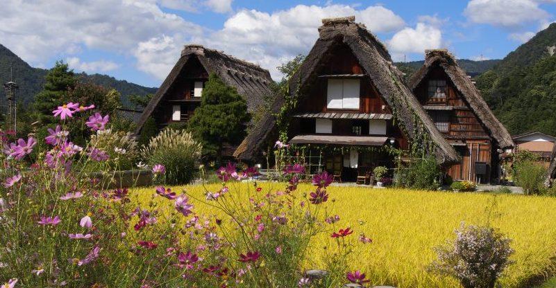 El pueblo Shirakawa go.
