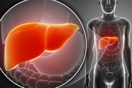 antioxidante hepático