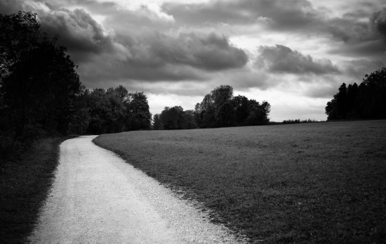 ¡No dejen nunca de caminar mirando alhorizonte!, ¡No dejen nunca de caminar mirando alhorizonte!, Revista NUVE