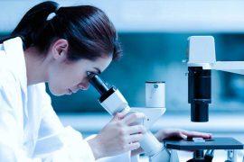mujeres-ciencia observatorio