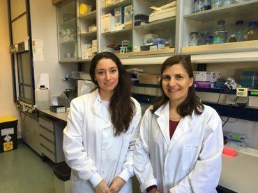 Campos y Vales_2 nanovesiculas