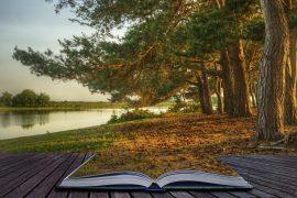 soledad transitoria, UAM -La soledad transitoria también tiene efectos dañinos para la salud, Revista NUVE
