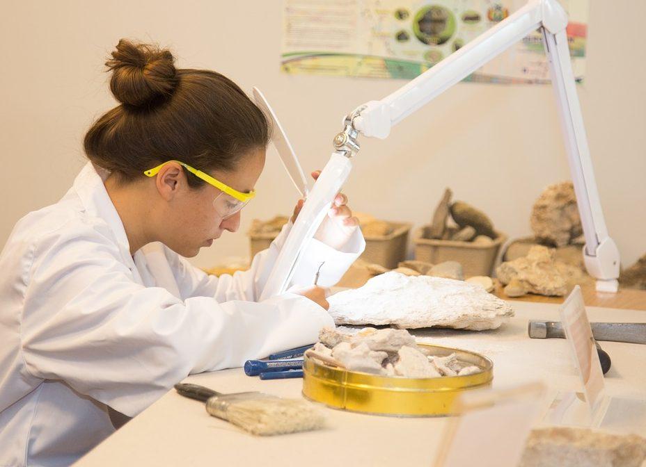 El Gobierno crea la Academia para jóvenes científicos, El Gobierno crea la Academia para jóvenes científicos, Revista NUVE
