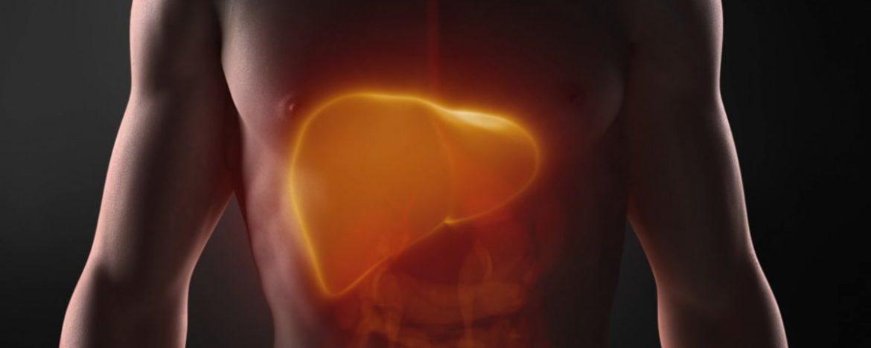 Identificación de una nueva diana terapéutica contra el cáncer de hígado, Identificación de una nueva diana terapéutica contra el cáncer de hígado, Revista NUVE