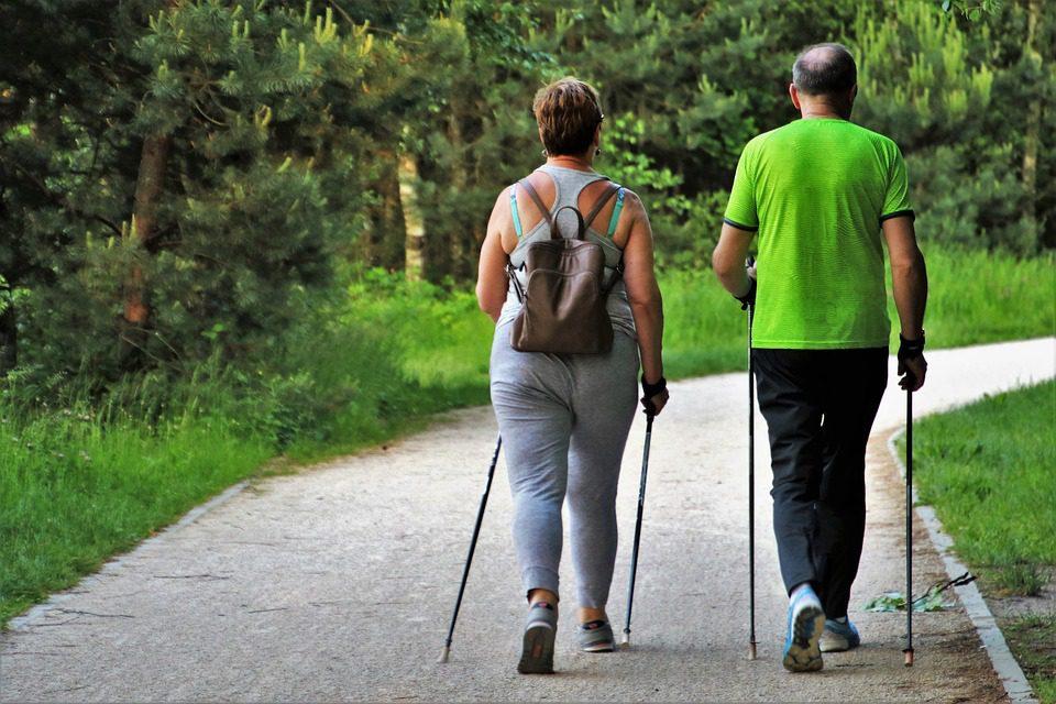 La actividad física prepara a las neuronas para regenerarse en caso de lesión medular, La actividad física prepara a las neuronas para regenerarse en caso de lesión medular, Revista NUVE