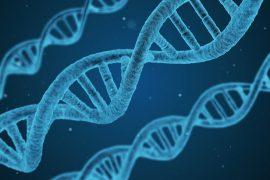 CRISPR_Cas