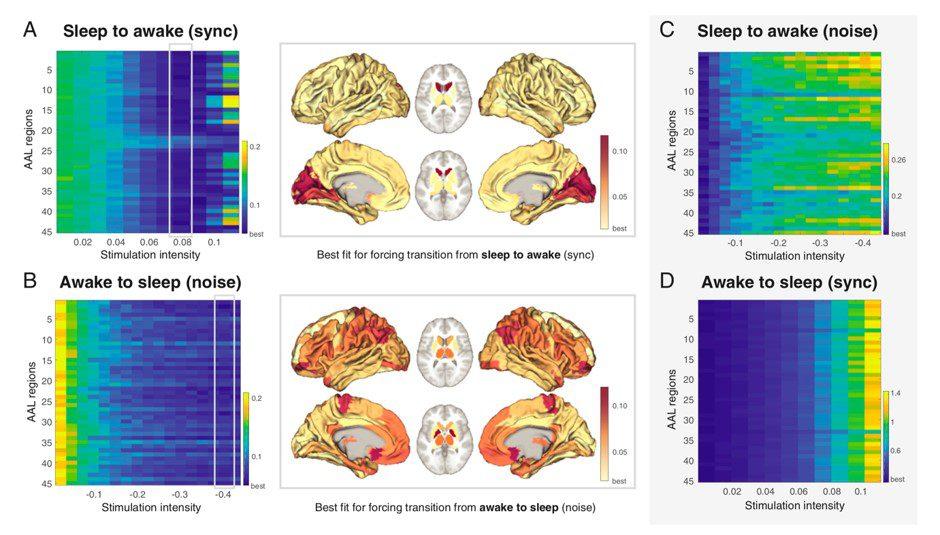 UPF - Forzar la transición de un estado cerebral a otro, UPF – Forzar la transición de un estado cerebral a otro, Revista NUVE